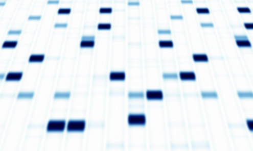 Gene DNA sequence abstract