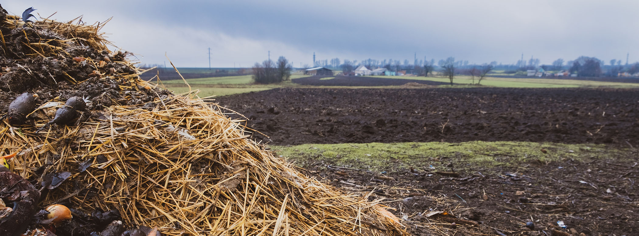 Assessing Composting Regulations across States for the Protection of Environmental and Human Health